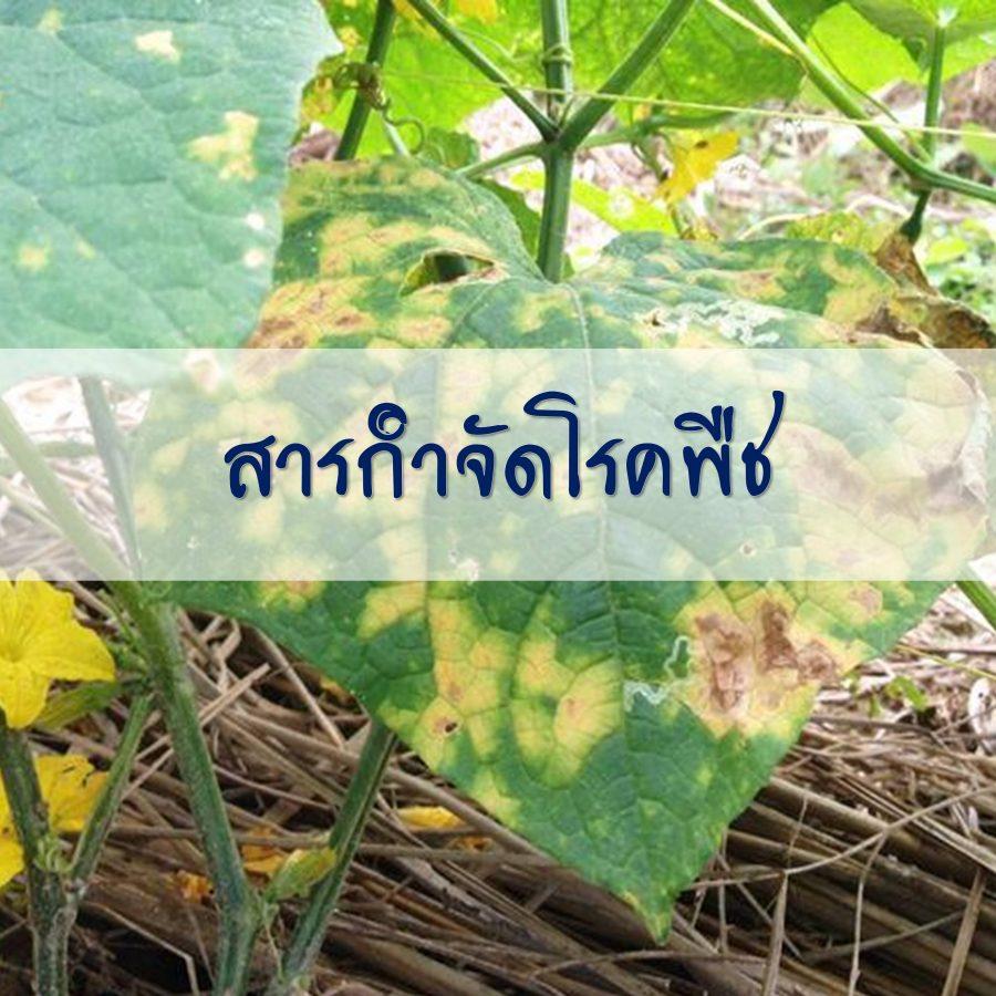 สารกำจัดโรคพืช